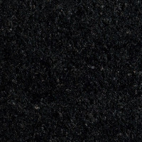 New Cambrian Black - brushed