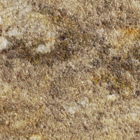Taupe Gold - brushed