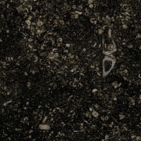 Black Limestone - brushed