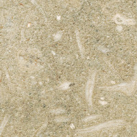 Fossil Limestone / Seagrass - brushed