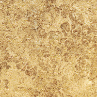 Nut Brown Limestone - brushed