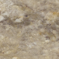 Taupe Gold - honed