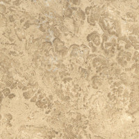 Nut Brown Limestone - honed