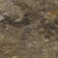 Taupe Gold - lether