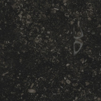 Black Limestone - lether