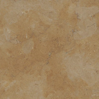 Jerusalem Gold Limestone - lether