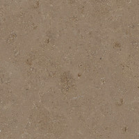 Jura Beige / Gold Limestone - lether