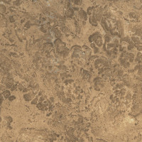 Nut Brown Limestone - lether