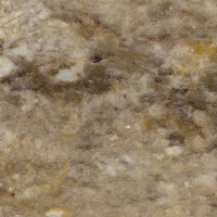 Taupe Gold - lucido