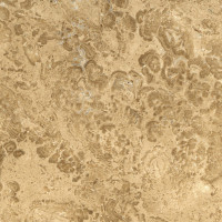 Nut Brown Limestone - lucido
